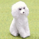 Fuzzy Poodle