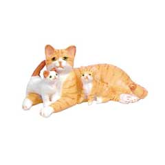 Orange Tabby Family