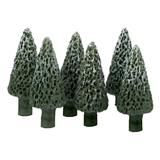 Six 7/8 inch Tall Pine Trees