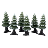 Six 7/8 inch Tall Spruce Trees