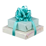 Iridescent Double Wrapped Gift