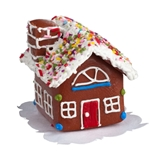 Sprinkle-Top Gingerbread House