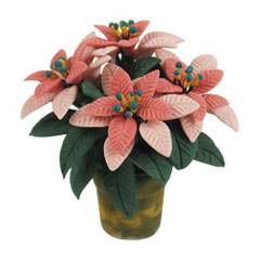 4-Bloom Pink Poinsettia