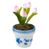 Potted Pink Tulips
