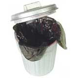 Garbage Can with Liner