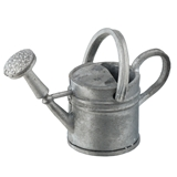 Silver Watering Can