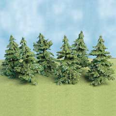 Six Green Spruce Trees
