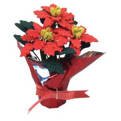 Large Poinsettia with Red Foil and Bow