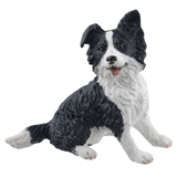 Sitting Black and White Border Collie