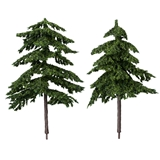 Two Douglas Fir Trees