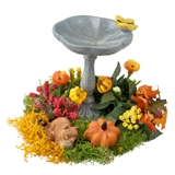 Fall Fountain