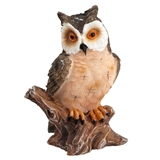Large Stately Owl