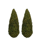 "Pair of 4""H Spring Green Trees"
