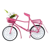 Small Pink Bicycle