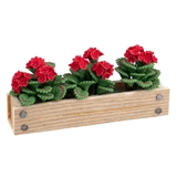 Red Geraniums Window Box