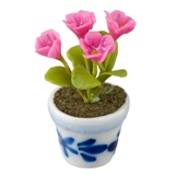 Pink Violets in Blue and White Pot
