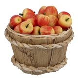 24 Macintosh Apples and Basket