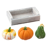 Gourds and Produce Crate
