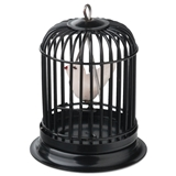 Black Birdcage with Bird