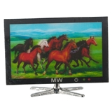 Flatscreen TV with 3-D Image