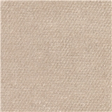 Beige Mist Carpet
