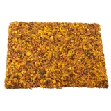 Autumn Foliage Mat