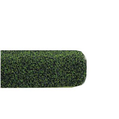 Squeeze Me Evergreen Hedge - 1 1/2 inch x 24 inch