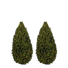 "Pair of 3""H Spring Green Trees"