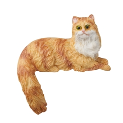 Honey Dip Long Hair Orange Cat