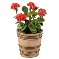 Red Geranium in Italian Planter