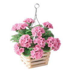 Hanging Pink Geraniums in Slatted Planter