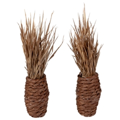 Pair of Dried Grass Arrangements