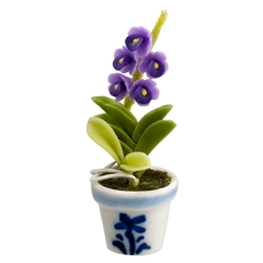Purple Orchid in Blue and White Pot
