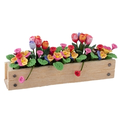 Tulip and Pansy Window Box