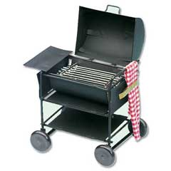 Barbecue Grill with Towel